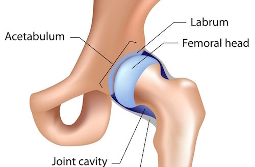 Are You A Triathlete With Hip Labrum Issues Tai Chiropractic